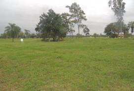 Terreno en Complejo Campestre Norte