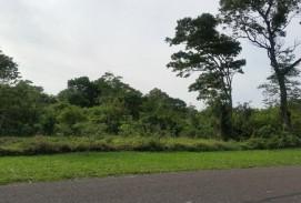 Km 17 Doble vía la Guardia (Condominio Laguna Azul)