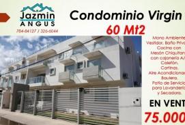 CONDOMINIO VIRGIN
