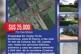 25.000 HECTÁREAS EN VENTA