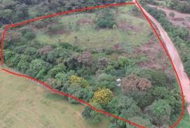 Terreno de 1,7ha, Urubo sobre camino de ladrillo visto